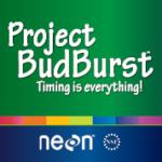 project-budburst